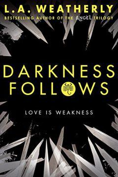 Darkness Follows
